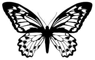 Butterfly v12 Decal Sticker