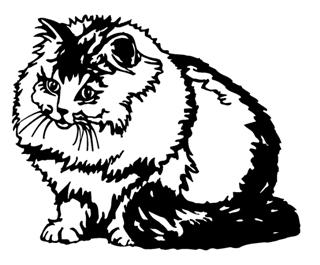 Cat v6 Decal Sticker
