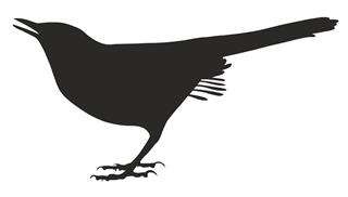 Catbird Silhouette Decal Sticker