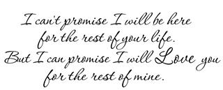 I can promise I will love you Decal