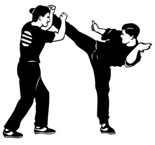 Karate 2 Decal Sticker