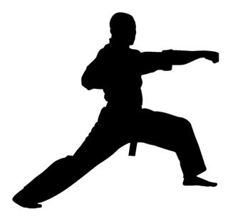 Karate Silhouette 2 Decal Sticker