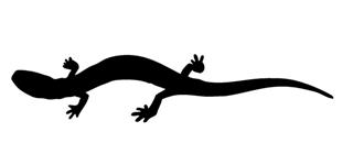 Lizard Silhouette v22 Decal Sticker